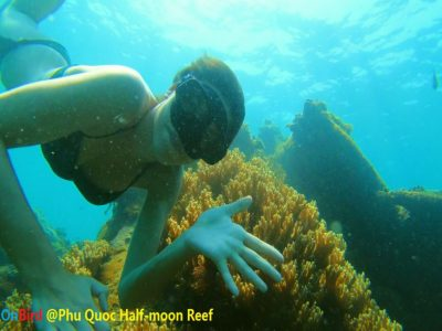 Phu Quoc Half-moon Reef - The best Phu Quoc Snorkeling