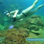 Snorkeling to see anemone in Phu Quoc Island, Vietnam