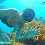 Phu Quoc touristy-avoiding snorkeling tour to explore Half-moon Reef