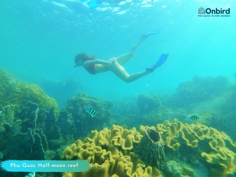 Phu Quoc Snorekling Tour to explore South Phu Quoc water
