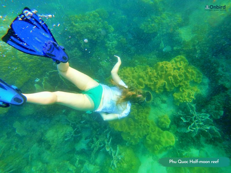 Snorkeling in Phu Quoc Island - Phu Quoc diving - snorkeling tour