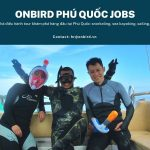 Onbird Tuyen Dung